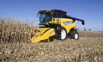 Corn Heads 980CR Rigid Corn Header - 8 rows