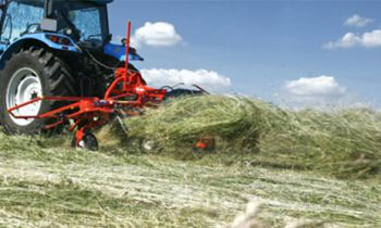 Hay and Forage Tools - Tedders